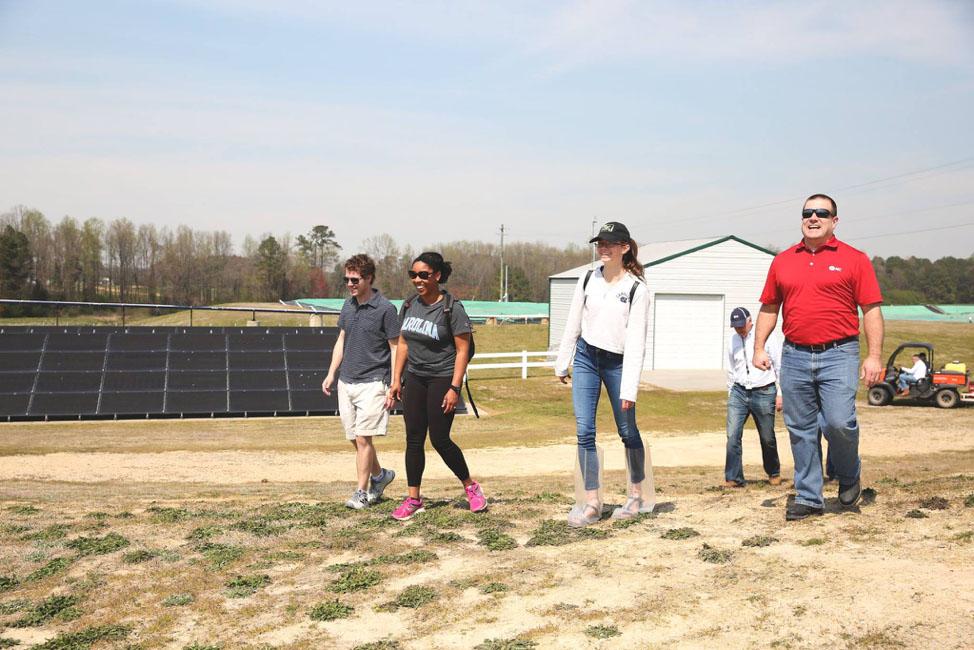 Washington Solar Farm